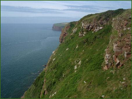 St. Bees Head